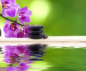 orquídea con piedras y reflejo en agua