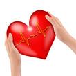 Hände halten gesundes Herz
