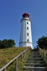 Dornbusch und Leuchtturm Hiddensee
