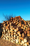 Firewood combined in a woodpile. poster