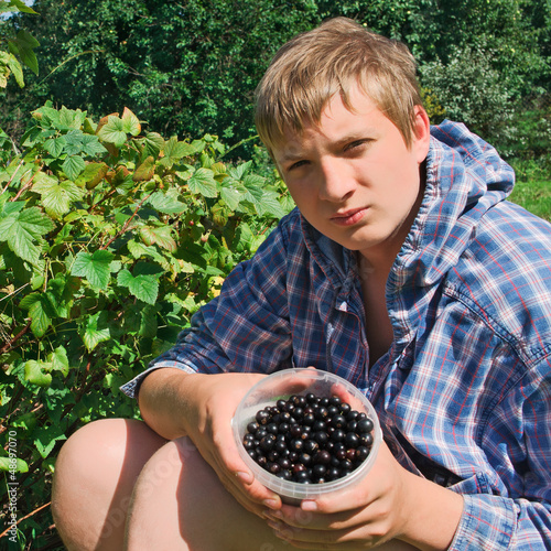 The guy picking black currants