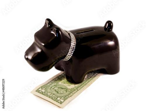Poster little dog moneybox
