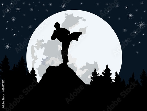 fighter silhouette - night