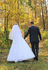 Newlyweds walking in autumn forest