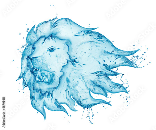 water splash lion isolated on white background