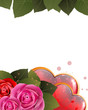 Valentines Day card with hearts and roses