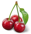 cherry with drops isolated on white. clipping path