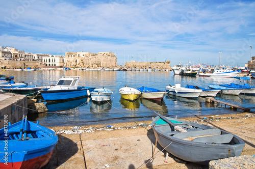 Panoramic view of Gallipoli. Puglia. Italy.