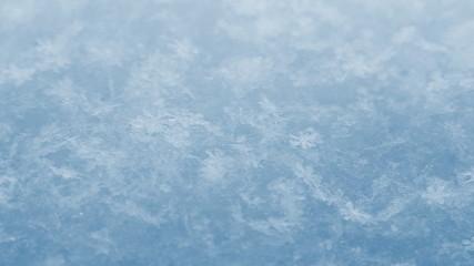 Snow. Macro.