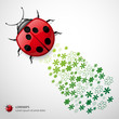 Vector Ladybug with Floral