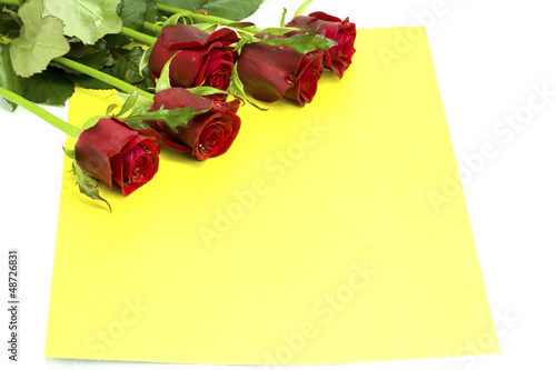 Bouquet of roses with dew on a yellow envelope