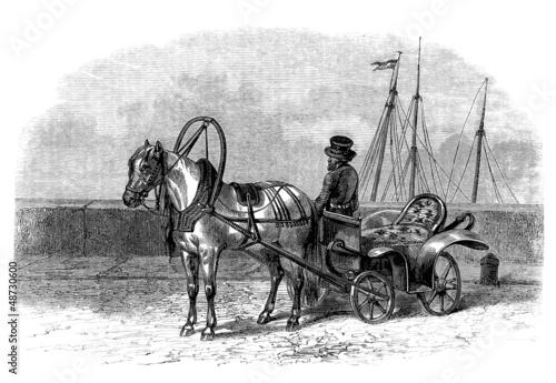 Russian Traditional Cab : Troski - 19th century