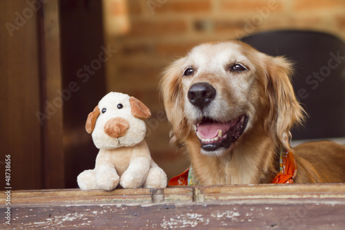 dog and friend