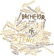 Word cloud for Bachelor of Science