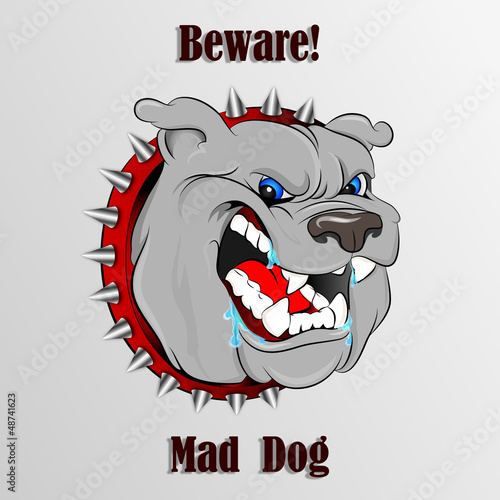 Beware Mad Dog 1