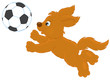 Funny brown puppy playing football