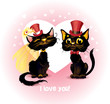 Two black cats in love.