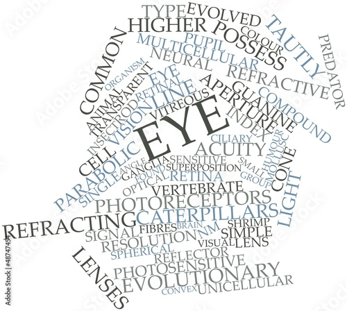 Word cloud for Eye