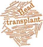 Word cloud for Head transplant poster