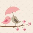 Fototapeten,hübsch,valentin,vögel,tier