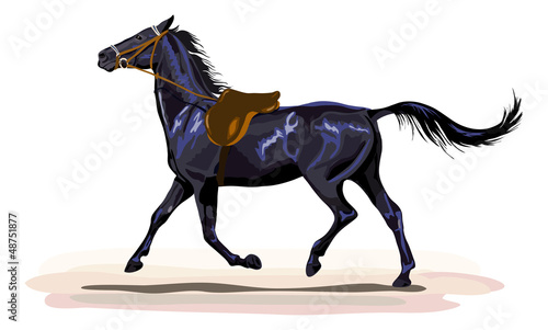 black horse trotting with saddle