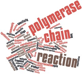 Word cloud for Polymerase chain reaction
