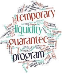 Word cloud for Temporary Liquidity Guarantee Program