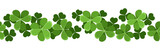 St. Patrick's day vector seamless background with shamrock.