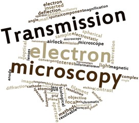 Word cloud for Transmission electron microscopy