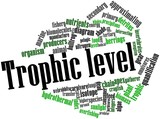 Word cloud for Trophic level
