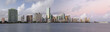 Miami Skyline Panorama.