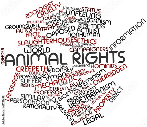 Word cloud for Animal rights