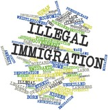 Word cloud for Illegal immigration