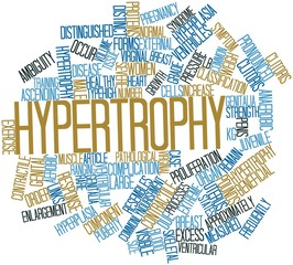 Word cloud for Hypertrophy