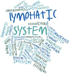 Word cloud for Lymphatic system