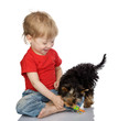 little boy playing with puppy. isolated on white