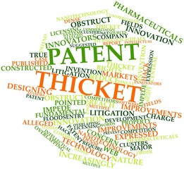 Word cloud for Patent thicket