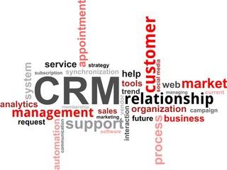 word cloud - crm