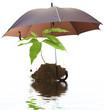 concept protection nature environnement écologie