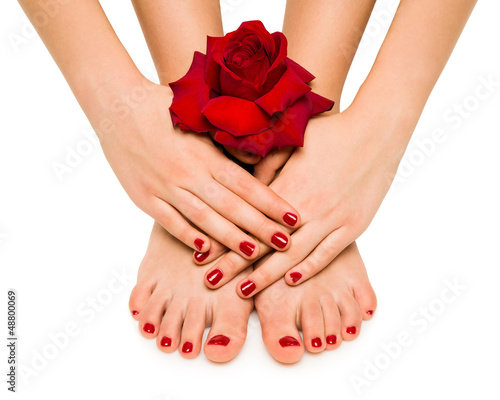 manicure and pedicure shows girl with rose