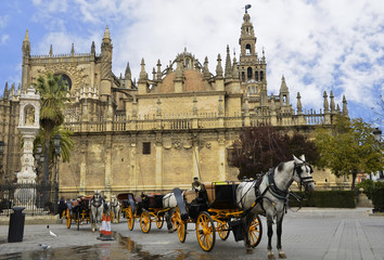 Typical image with horse carriages and the Cathedral of Seville
