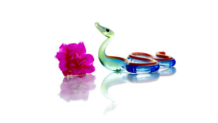 Glass snake and flower reflekted in the glass