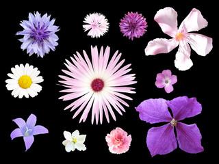 Blumenset_02
