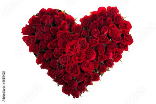 Staande foto Roses Roses