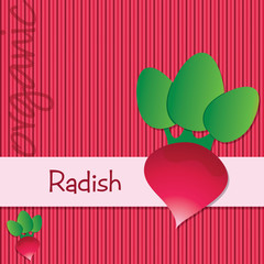 Bright organic radish card in vector format.
