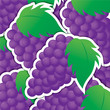 Purple grape sticker background/card in vector format.