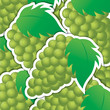 Green grape sticker background/card in vector format.