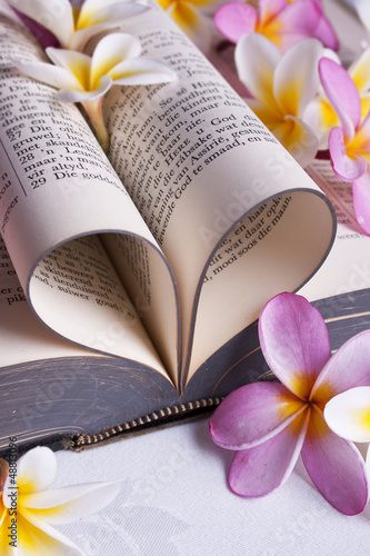 A heart shaped Afrikaans Bible and flowers