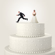 escape from wedding