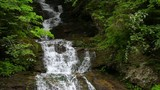 Tranquil waterfall scenery in the middle of forest. Carpathian